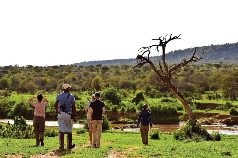 walk Laikipia wilderness