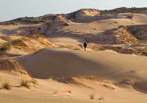 Witsand Dune Scape